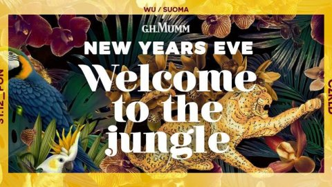 New Years Eve | Welcome to the jungle - Sylwester